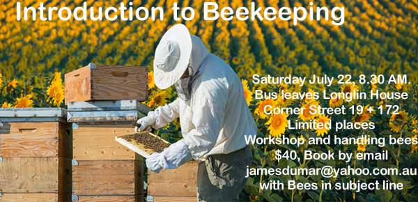 Introduction to Beekeeping in Cambodia